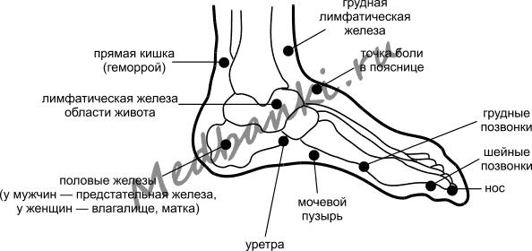 porno-zrelie-zhenshini-i-devushka