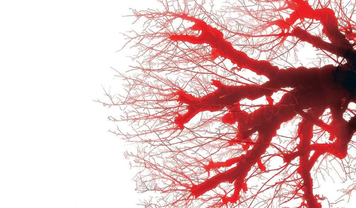 Польза капилляротерапии и принципы воздействия на организм человека