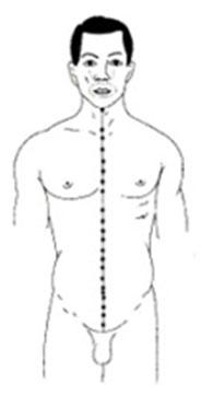 Рис. 6 Акупунктурные точки по осевой линии живота