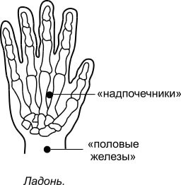 11. Тромбоцитопеническая пурпура, лечение присосками Haci