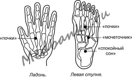 16. Невралгия тройничного нерва, лечение присосками HACI