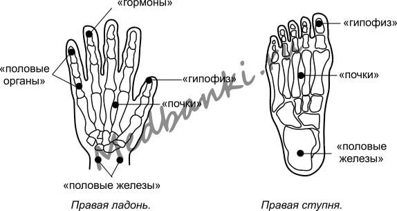 64. Климактерический синдром, лечение присосками HACI