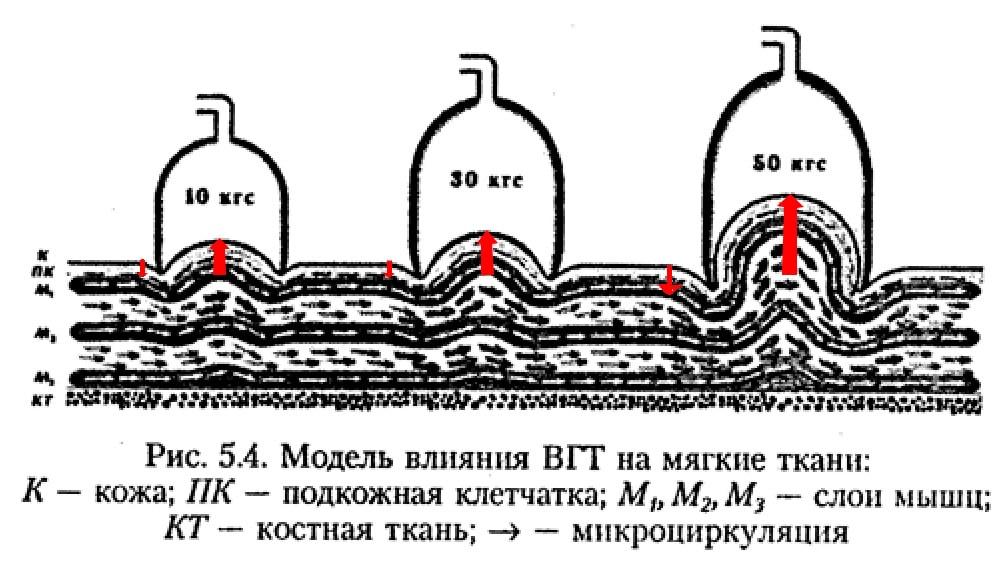 Влияние ВГТ на мягкие ткани
